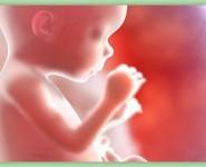18-weeks-pregnant