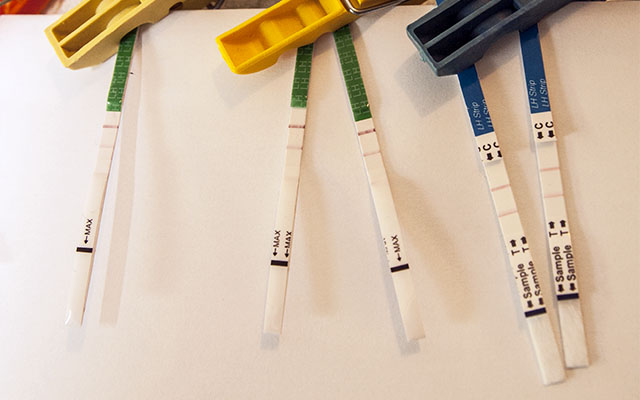 Teste ovulatie / Calculator ovulatie - ce este si cum il folosesti